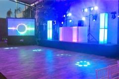 DJ-PROFESIONAL-2